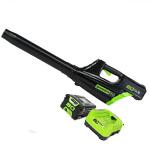 GreenWorks GBL80300